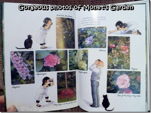 Photos from Monet's Garden